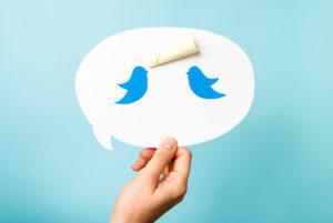 Two blue bird, dove, pigeon on speech bubble.